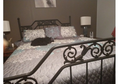Black metal bed frame headboard and footboard