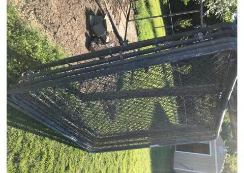 6x6 fence panels, seven of them 150.00$